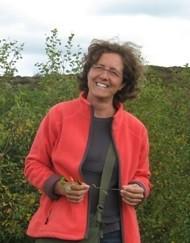 Annalisa SANTANGELO - Ricercatore di Botanica Sistematica (BIO/02) Dipartimento di Biologia - Università degli Studi di Napoli Federico II