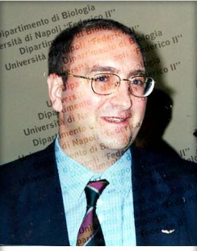 Antonio PORCELLINI - Professore Ordinario di Patologia Generale (MED/04) Dipartimento di Biologia - Università degli Studi di Napoli Federico II