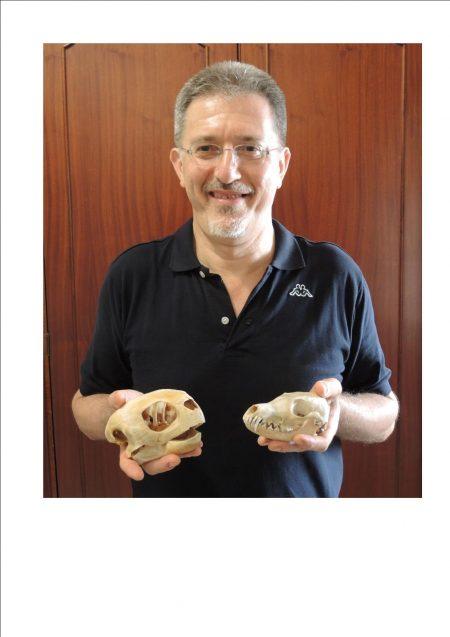 Fabio Maria GUARINO - Professore Associato di zoologia (BIO/05) Dipartimento di Biologia - Università degli Studi di Napoli Federico II